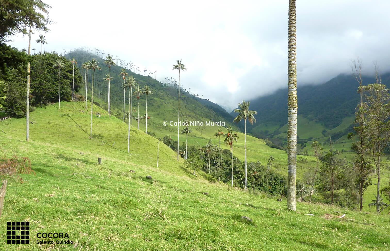 foto-arq-colombia-17