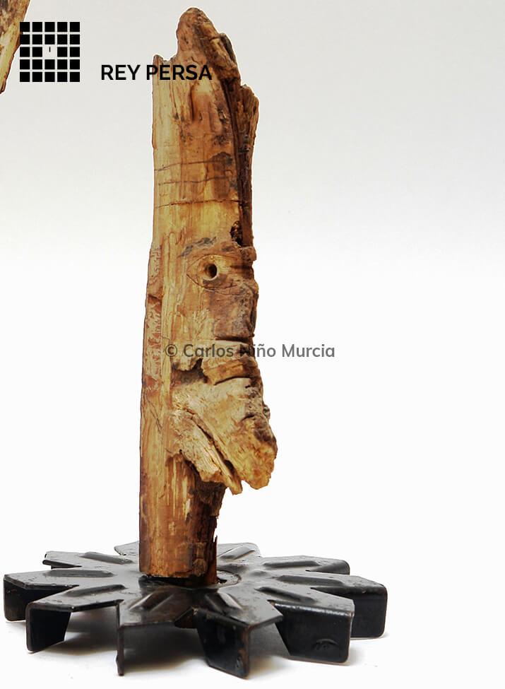 foto-nudos-bichos-34